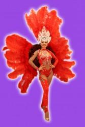 Костюм Антре красное с перьями